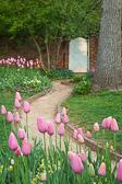 Dye_100414_0200_garden.jpg